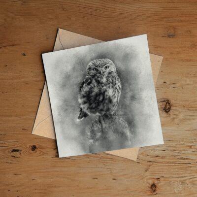 Little Owl Art Greeting Card