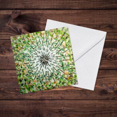 Cactus Blank Greetings Card