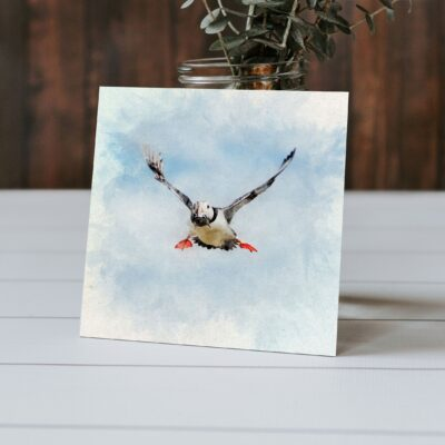 Puffin Watercolour Greeting Card