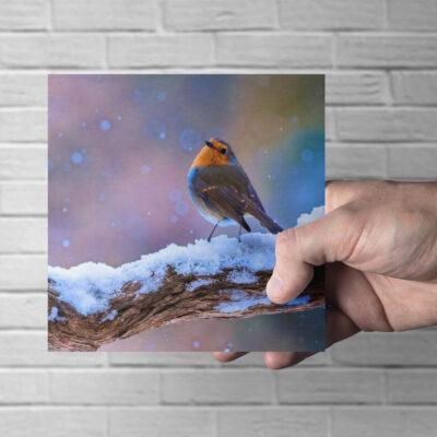 Robin in Snow Christmas Card